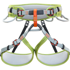 Climbing Technology Ascent Harness grey/green